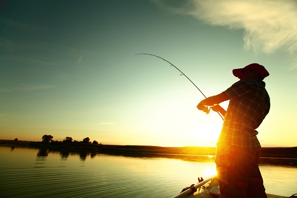 Student of Industry: Picky Fishers and the Hardest Insurance Market