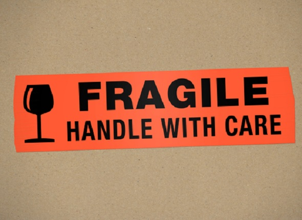cargo-insurance-business-opportunity-or-e-o-risk