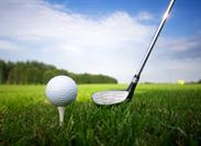 Golf Bag Bling: What Is a 'Motorized Vehicle' on a Standard Homeowners Policy?