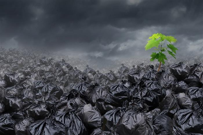 4 tips to provide the environmental insurance your client needs