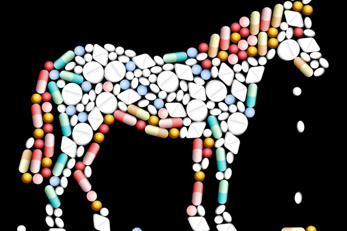 equine-market-can-t-hold-the-reins-on-major-medical