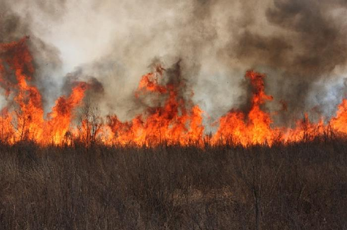 oregon wildfires bring out the best in local independent insurance agents