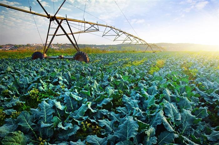 crop insurance highlighted in house hearing
