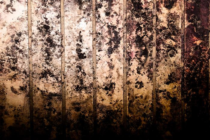 hidden mold in newly purchased home: why won't the carrier pay?