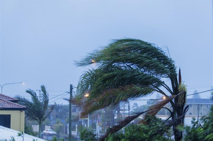 how agents can help clients mitigate hurricane risk