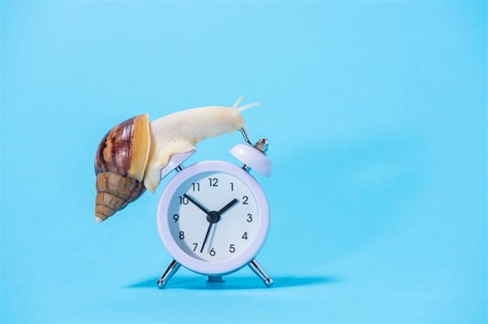 7 steps to serving clients through mail delays