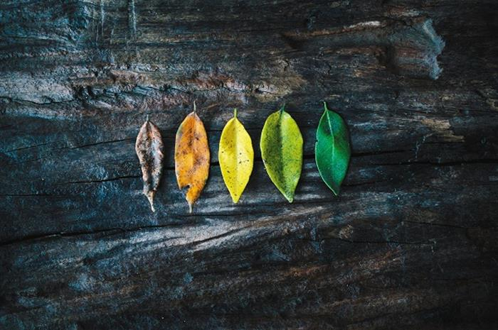 5 tenets of refreshing a legacy brand